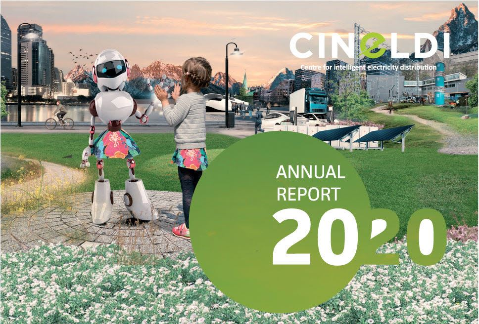 CINELDI Annual report 2020