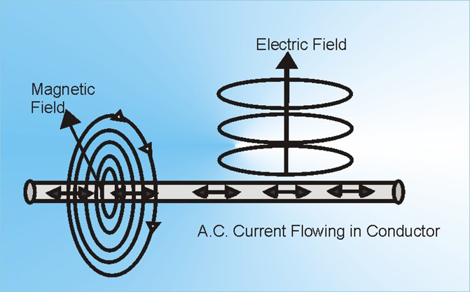 difference between electric field and magnetic field pdf
